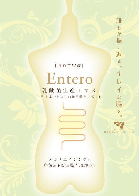 乳酸菌生産エキス エンテロ